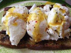 """Eggs """"Benefit"""" over Eggplant"""